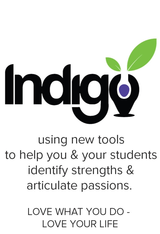 Indigo Education Company