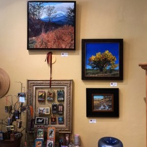 Why Not Niwot? Art Show - Deadline for Submissions